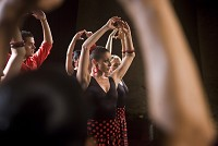 La estrella. Flamenco